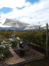 Bramon tables in the vineyards
