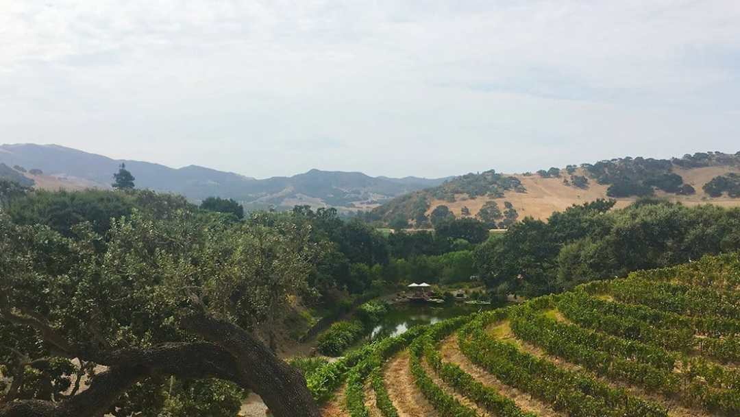 Discoveries abound in wine country.