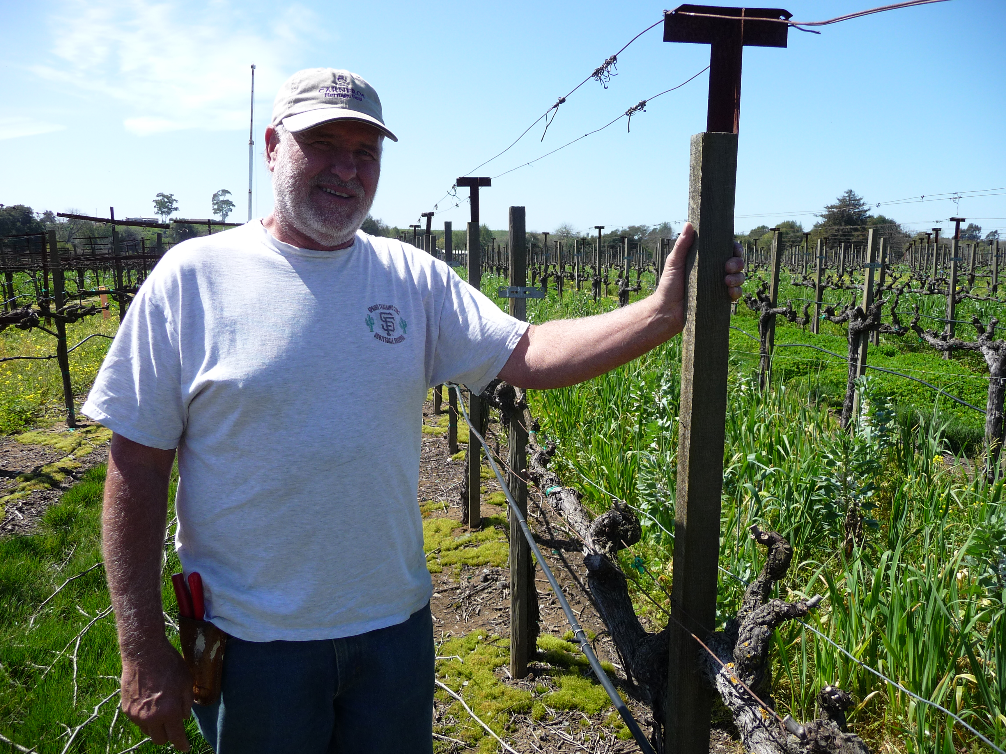 Steve Beresini and his vineyard