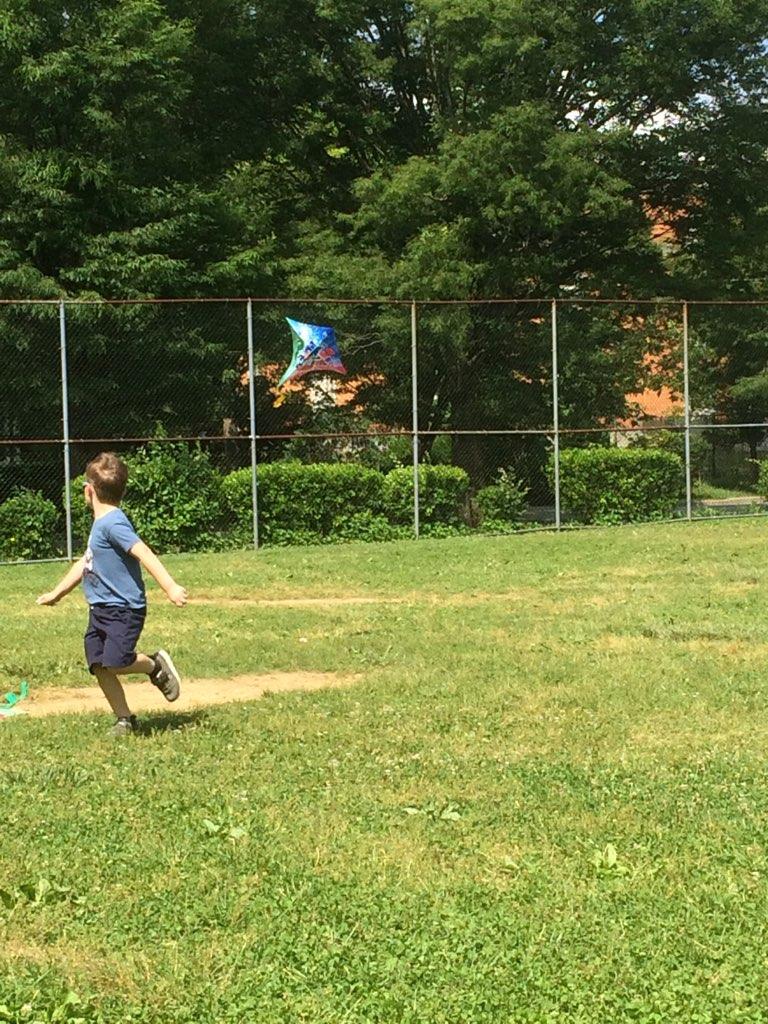Fun by Flying Kites