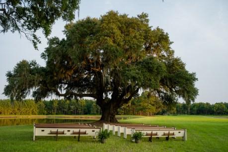 charleston-wedding-venue-wingate-plantation-johns-island-sc-00005