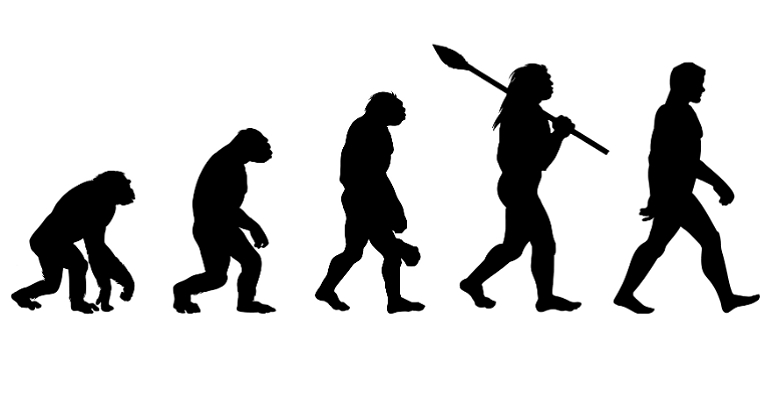 Wing Chun Evolution