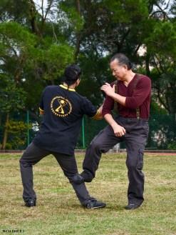 Sifu Wan Kam Leung 4