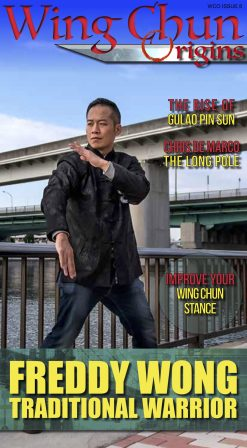 Wing Chun Origins Issue 8