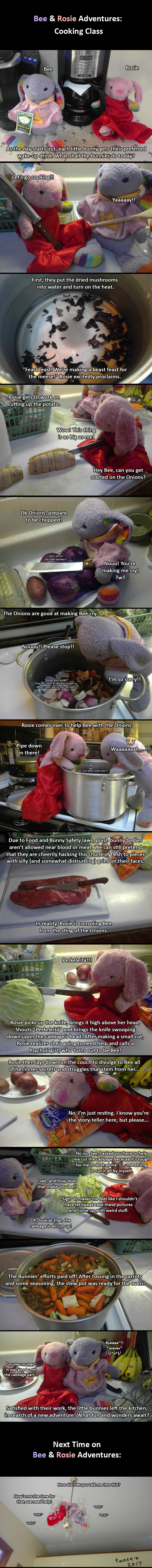 A Cooking Adventure!
