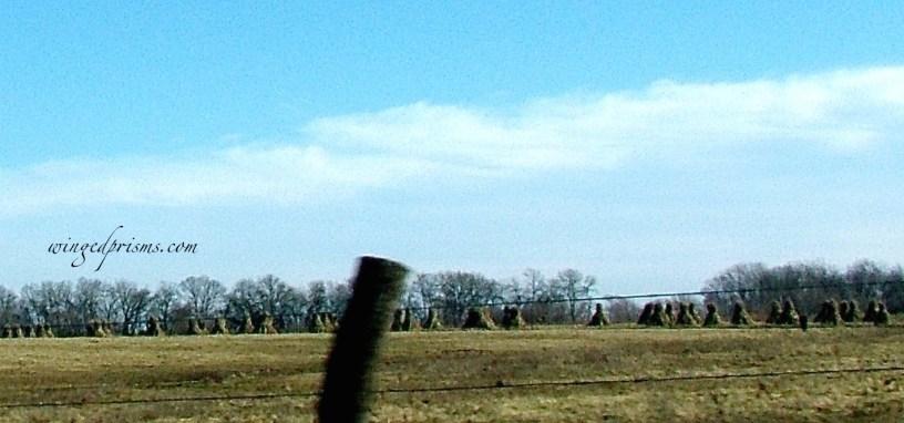 haystacks - literally