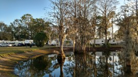Pond at Winter Garden RV Resort