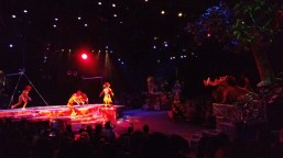 The Lion King show at Animal Kingdom, February 8, 2018