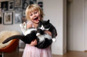 cat and human relationship