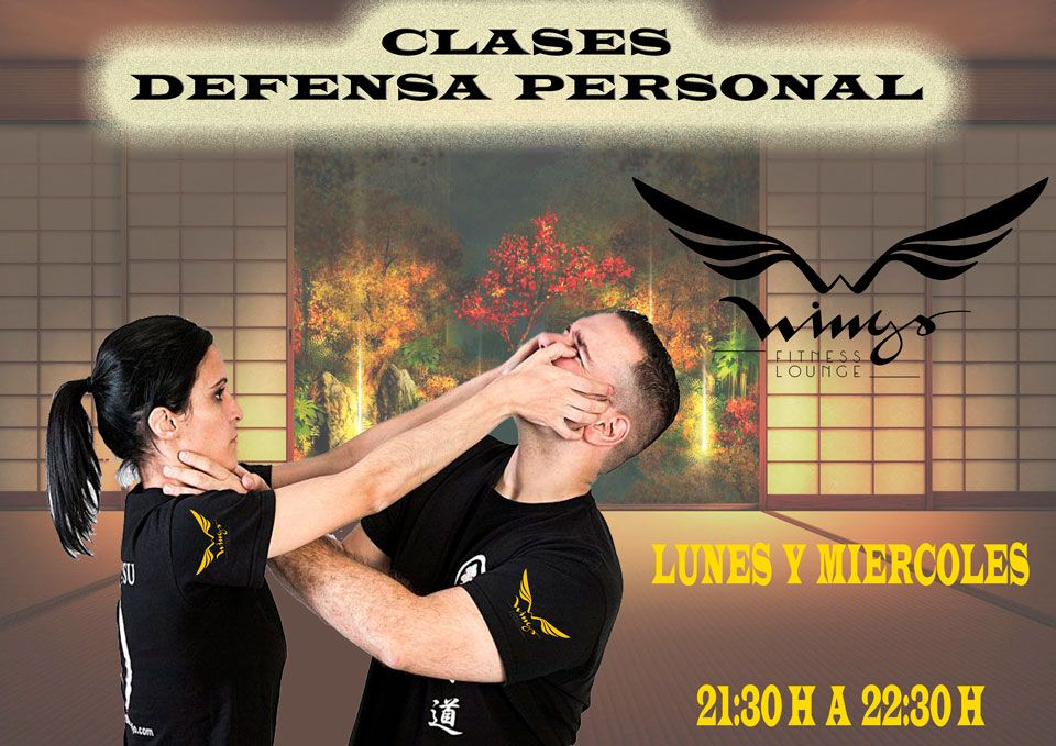 Defensa Personal - Wings Fitness Valterna