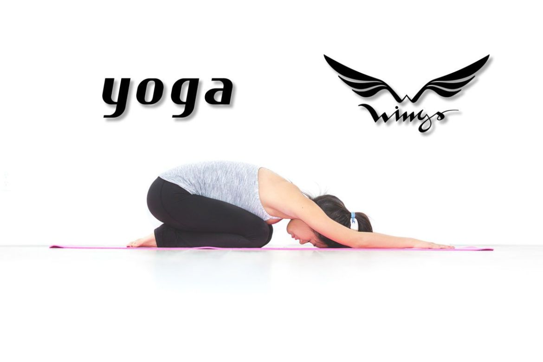 Yoga - Wings Fitness Lounge - Valterna Paterna