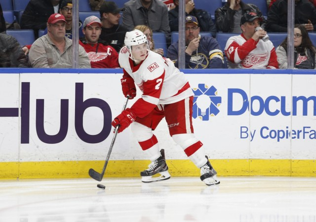 Red Wings extend Joe Hicketts