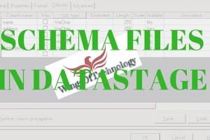 SCHEMA-FILES-IN-DATASTAGE