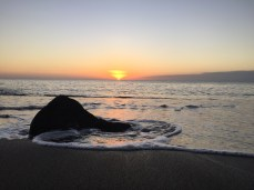 The black sand beach of Isla Floreana.