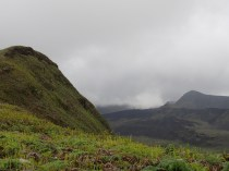 Looking into the caldera of the Sierra Negra Volcano in the Galapagos Islands