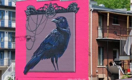 Street art fearturing a crow