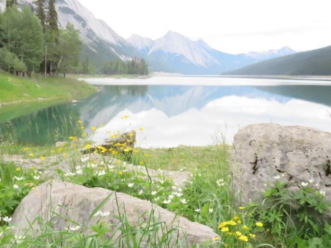 Moose Lake, Banff National Park, Canada