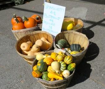Pumpkins for Sale, Saint Hilaire, Quebec