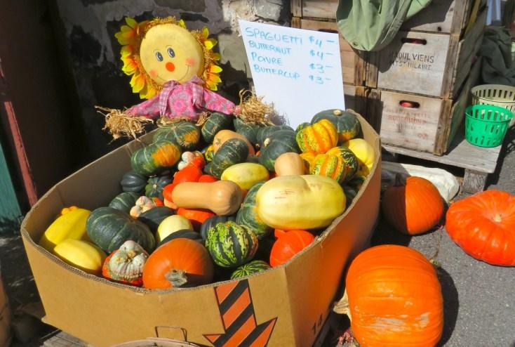 Pumpkins, Saint Hilaire, Quebec