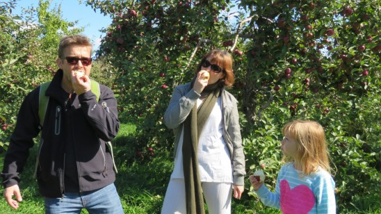 Eating apples at an orchard in Saint Hilaire