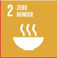 SDG 2