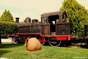 Curiosa locomotora