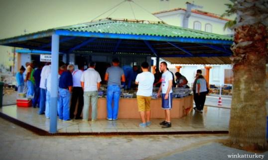 Lugar de la subasta en el Iskele