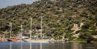 Costa Mediterránea