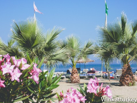 Playa en Kusadasi