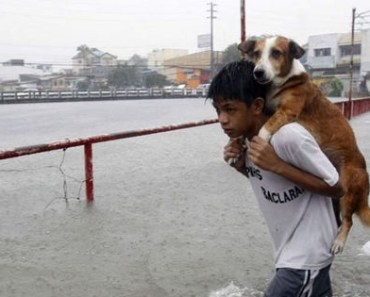 29 Powerful Photos That Will Restore Your Faith in Humanity.