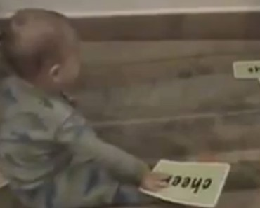 This Super Baby Is a Genius and Reads Flash Cards