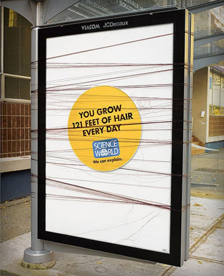 20 Billboards with Science Facts - You grow 121 feet of hair every day.