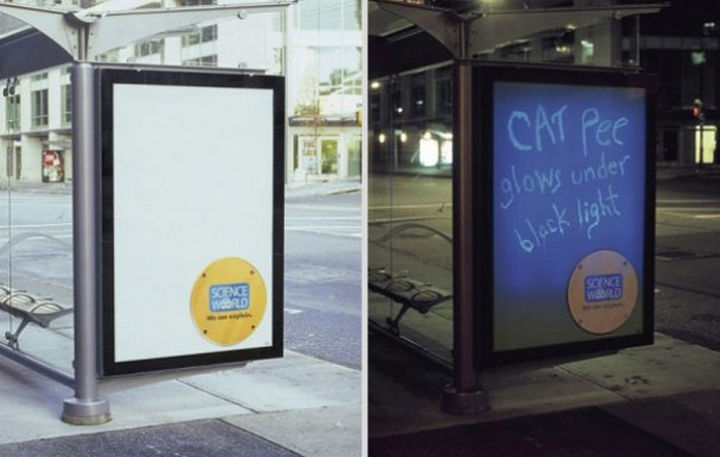20 Billboards with Science Facts - Cat pee glows under black light.