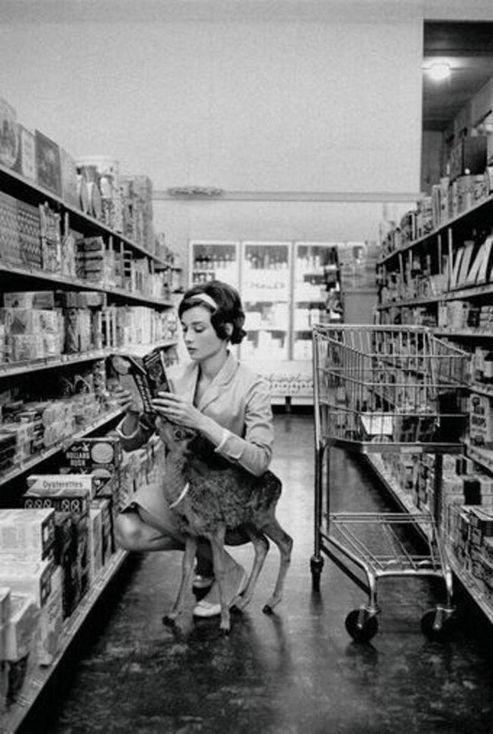 Audrey Hepburn shopping with her pet deer, Ip, in Beverly Hills, California in 1958.