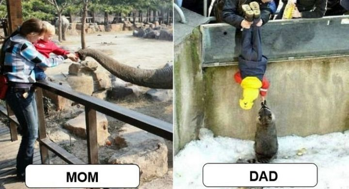 22 Ways Parenting Styles Differ Between Moms and Dads - Parents love to let their kids experience animals at the zoo.