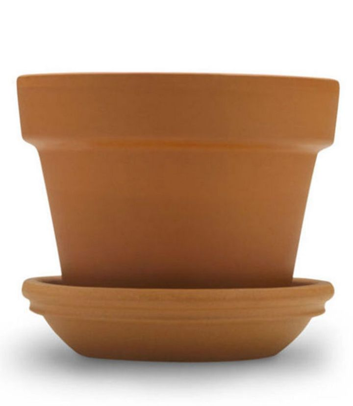 47 Amazing Life Hacks - Flower Pot - Keep your toilet plunger off the floor by placing it in a decorative flower pot.