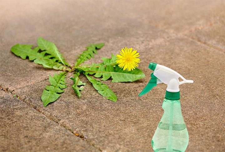 47 Amazing Life Hacks - Vinegar - Control weeds around your home by spraying them with household vinegar. No chemicals!