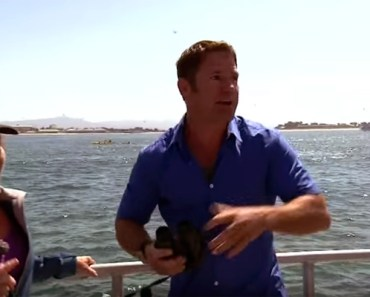 Blue Whale Spotted in Monterey Bay Interrupts Interviewer.