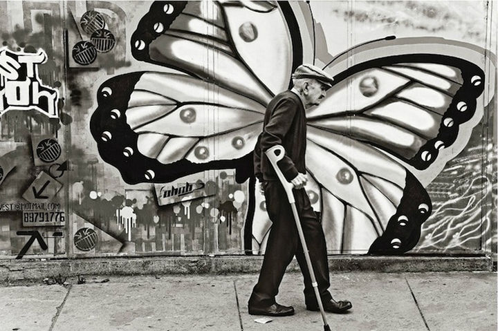 28 Perfectly Timed Photos of People Having a Bad Day - A beautiful butterfly.