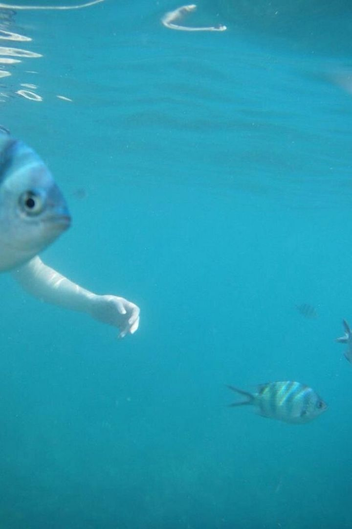 31 Hilariously Misleading Photos - That is not a fish with arms.