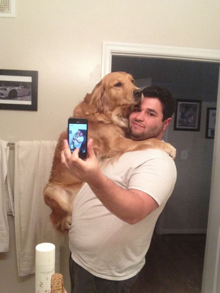 12 Huge Dogs That Still Think They Are Puppies - This dog loves to hug...adorable.
