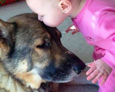14 Dog-Child Best Friends Are So Cute They'll Melt Your Heart.