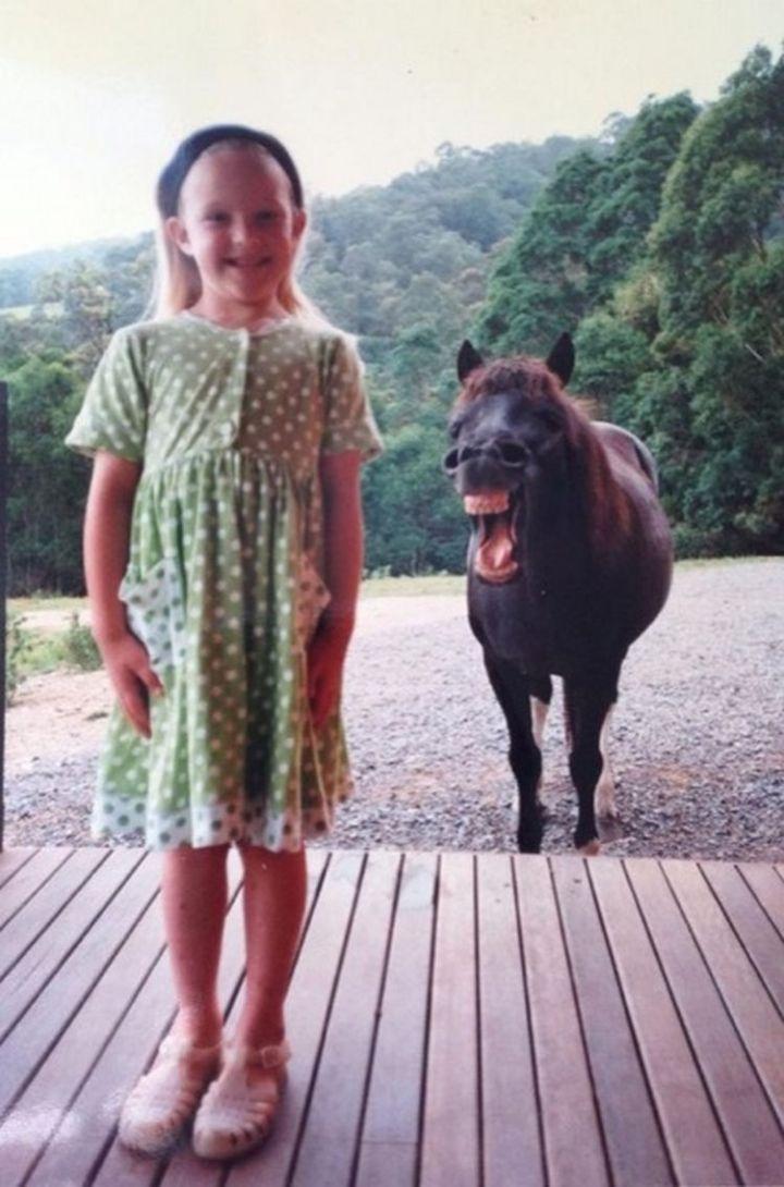10 animal photobombs - Hee-haw!
