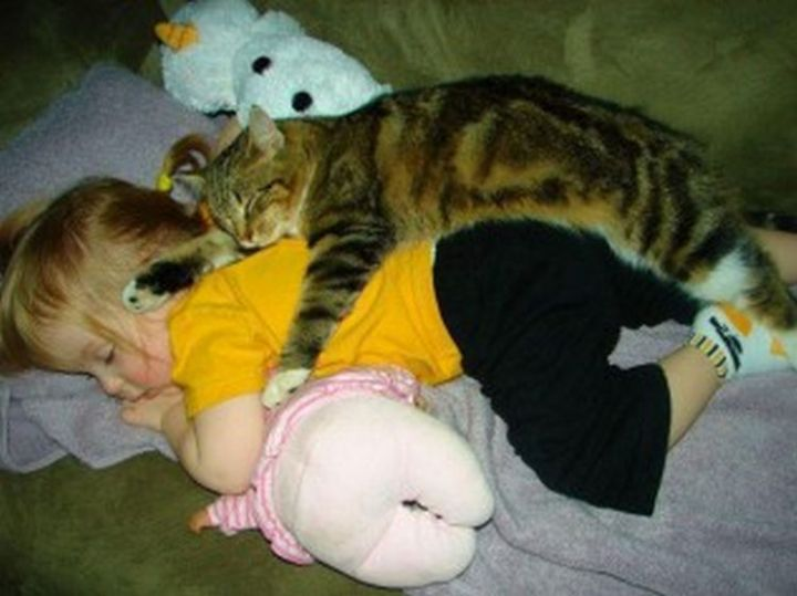 25 Kids Sleeping in the Strangest Places - Having a nap with her best friend.