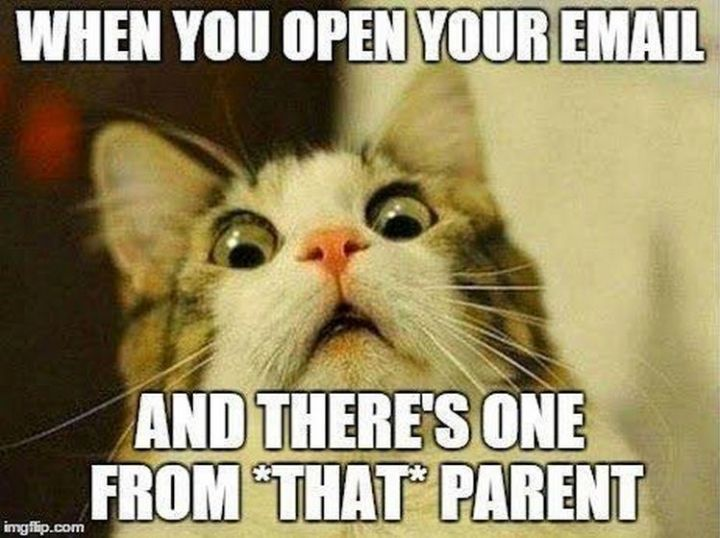 67 Hilarious Teacher Memes - Where is that junk folder?