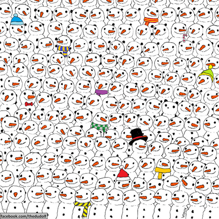 Can you find the hidden panda?
