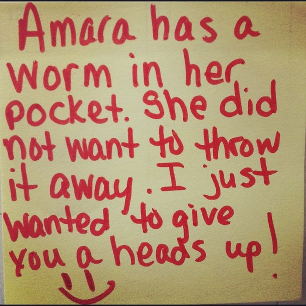 17 Teacher Notes - I hope the worm in her pocket was found before laundry day.