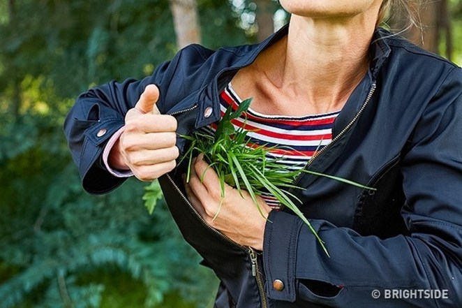 11 Wilderness Survival Tips - Stuff your clothes with branches and grass to help stay warm.
