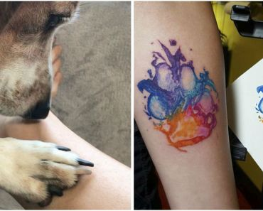 25 Dog Paw Tattoo Ideas to Showcase the Special Bond with Your Canine.