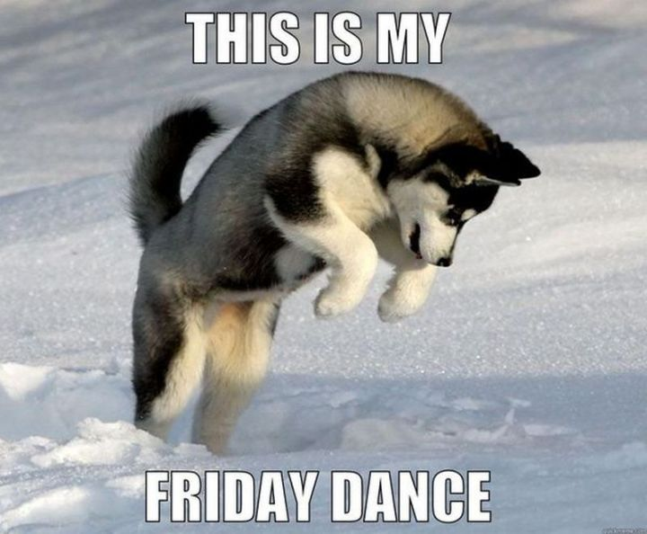 """27 Funny Friday Memes - """"This is my Friday dance."""""""